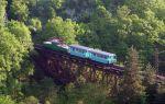 Узкоколейная железная дорога Боржоми — Бакуриани
