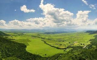 Алазанская долина — Грузия