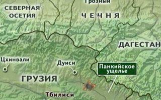 Панкисское ущелье: Грузия