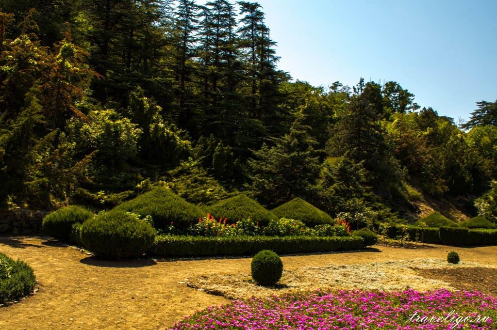 ботанический сад1