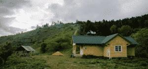 Боржоми-Харагаульский национальный парк
