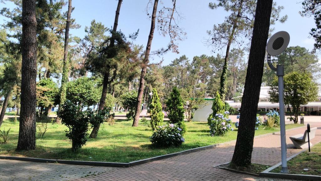 Городской парк Кобулети