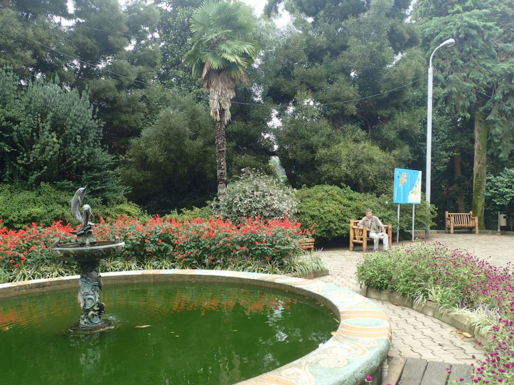 батумский ботанический